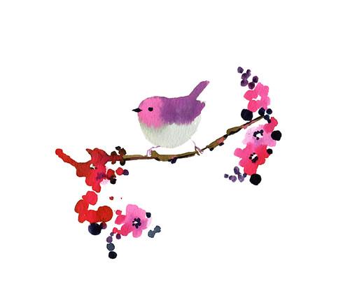 all sizes little bird flickr photo sharing