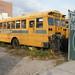 School Bus Graveyard, Coney Island, New York 05/11/2009