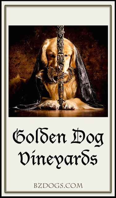 Golden Dog Vineyards