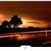 Luminous Road