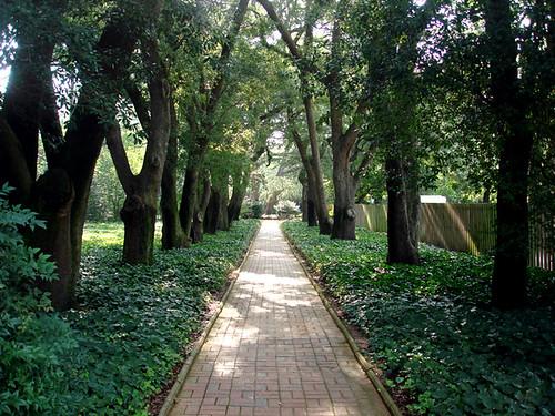 Hopeland Gardens Aiken S C Iheartkodak Flickr