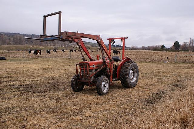 1964 Massey Ferguson 135 : Massey ferguson tractor production years