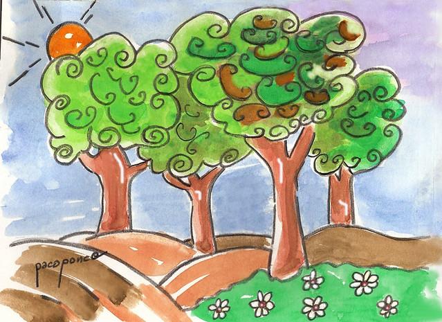 Rboles de hoja perenne paseando por el jard n el campo for Arboles para jardin de hoja perenne