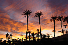 Palm Springs Sunrise | by searchnetmedia