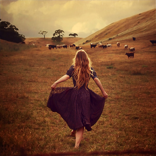 the work of early mornings | by brookeshaden