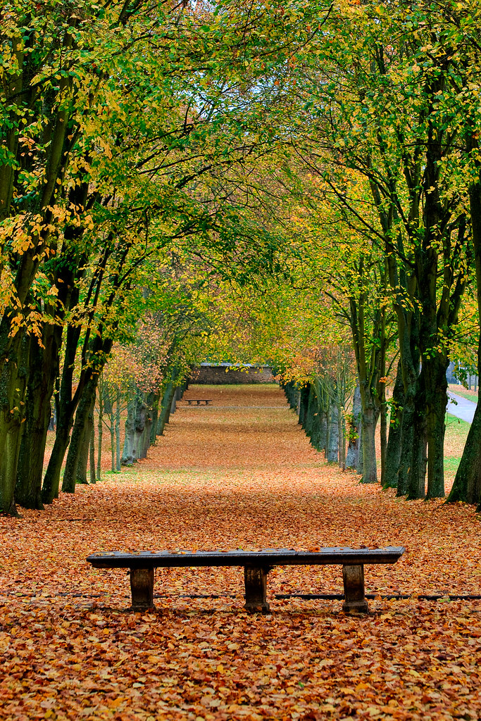 Autumn Leaves L 39 Automne Dans Le Parc Du Ch Teau De Cha Flickr