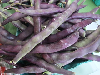 Purple Green Beans | by swampkitty