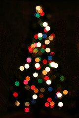 Christmas tree lights 0071 | by nicisme