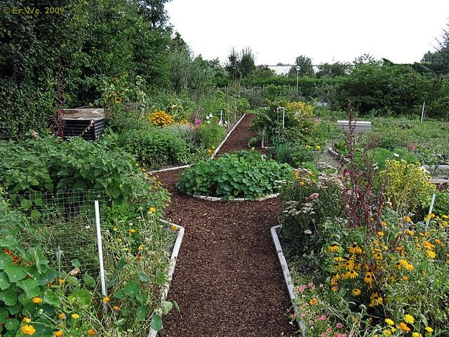 Garten K Gemuesegarten Neue Einfassung 2009 08 This