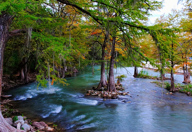 The Guadalupe River Quot The River Delights To Lift Us Free