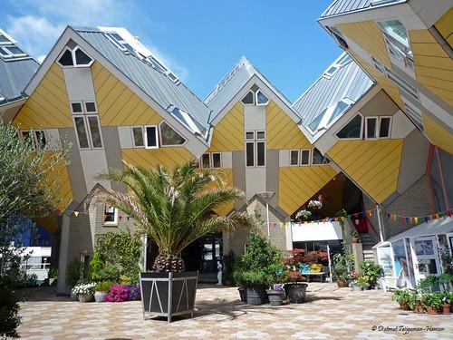 Rich Beach Houses
