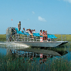 Airboat Tours In Florida Coreys