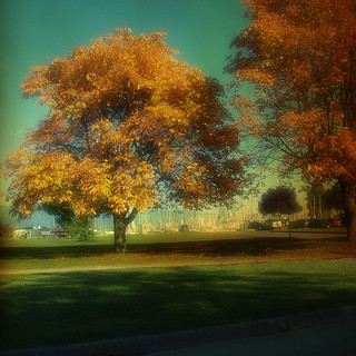 ~ Tee at Five ...Our Place ~ from  Fall Romance in Olympic City ~ | by My Baby Mia