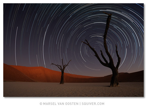 Circling the Dead | by Marsel van Oosten
