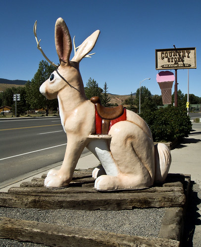 Dubois Jackalope Advertisement | by road triper