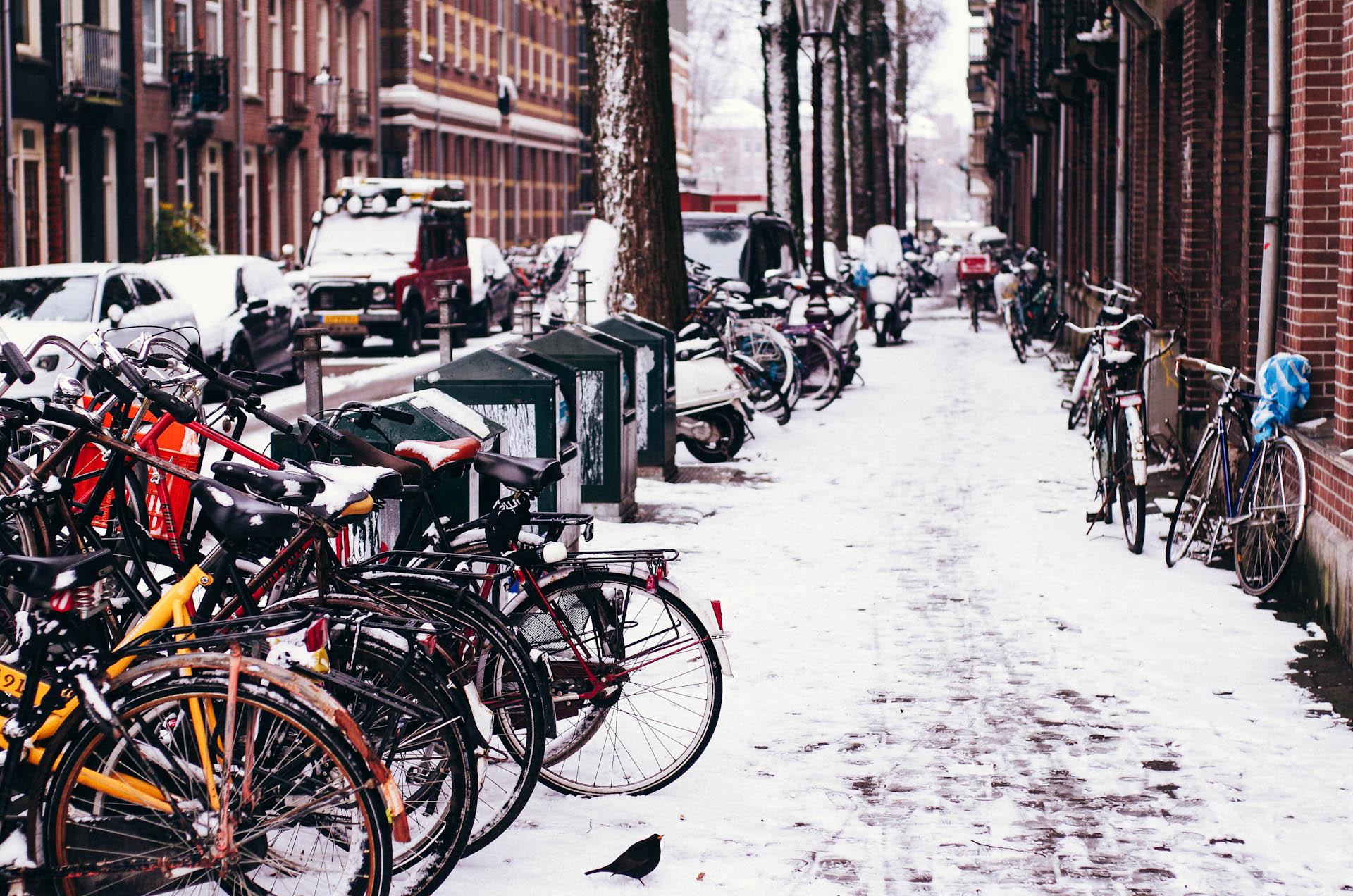Amsterdam, Benji's