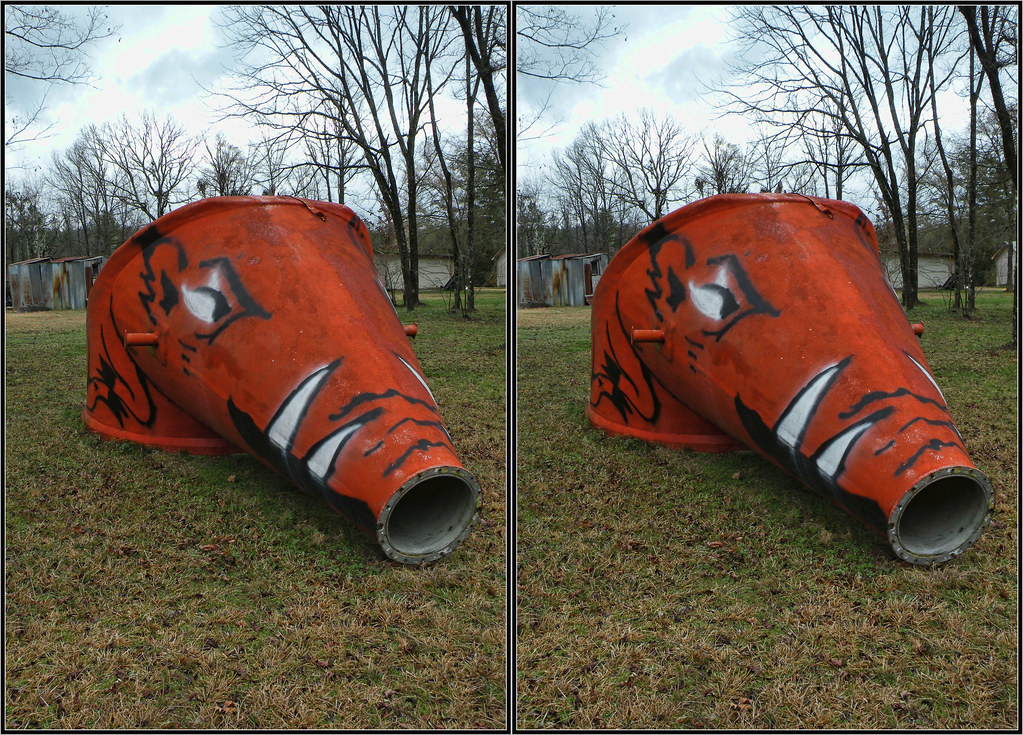 Forum on this topic: How to Create Stereo Photographs, how-to-create-stereo-photographs/