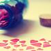 heart of hearts {Explored!}