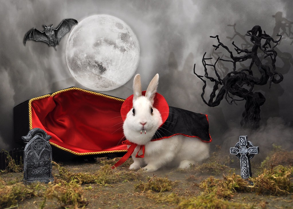 Halloween Jobs