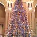 Argosy Christmas Tree
