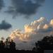 More Morning Sky