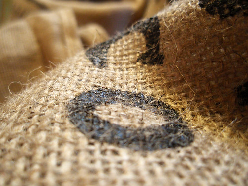 318/365 Burlap bag | by Mykl Roventine
