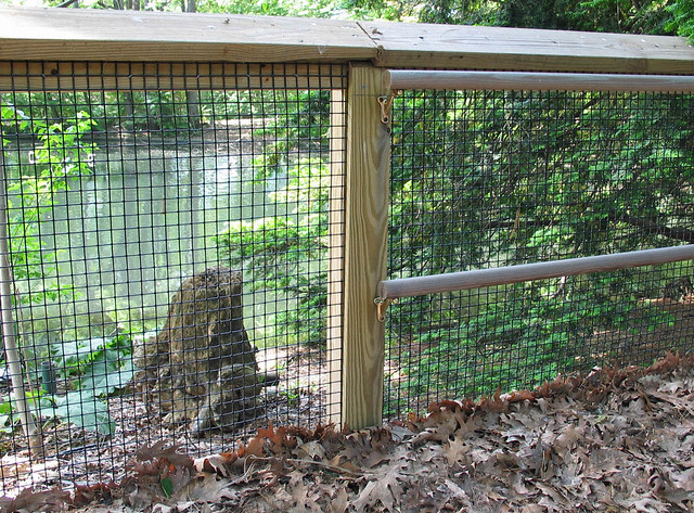 Vinyl coated welded wire mesh | Walkway with vinyl coated we… | Flickr
