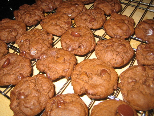 double-chocolate gingersnaps | by Strongrrl