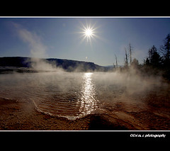 Yellowstone National Park | by olivia - 。◕‿◕。