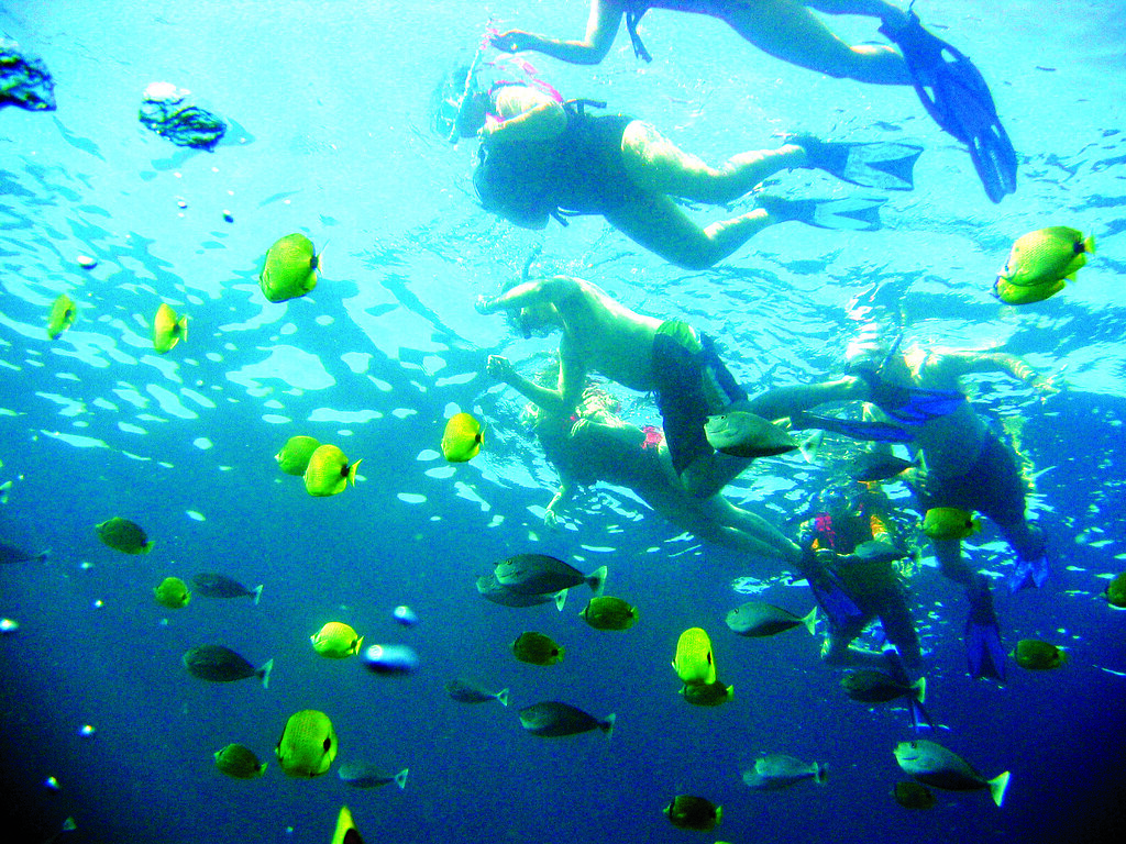 Cozumel Snorkeling Tours From Cancun