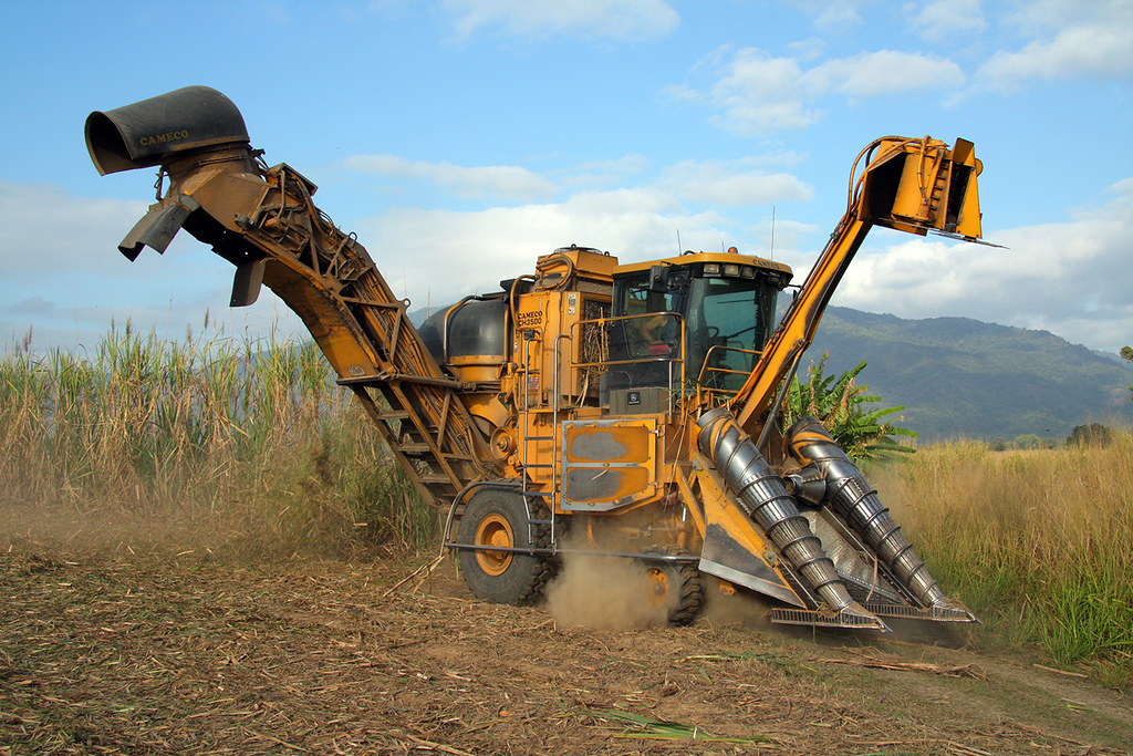 Sugar Cane Harvester : Photo of a sugar cane harvester at the end nd last