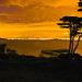San Francisco Bay from Crissy Field