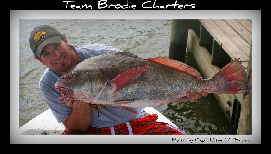 Fishing in biloxi mississippi while fishing aboard team for Fishing in biloxi ms