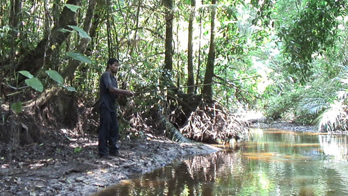 Cho fishing in a jungle river walking the amazon flickr for Jungle furniture white river