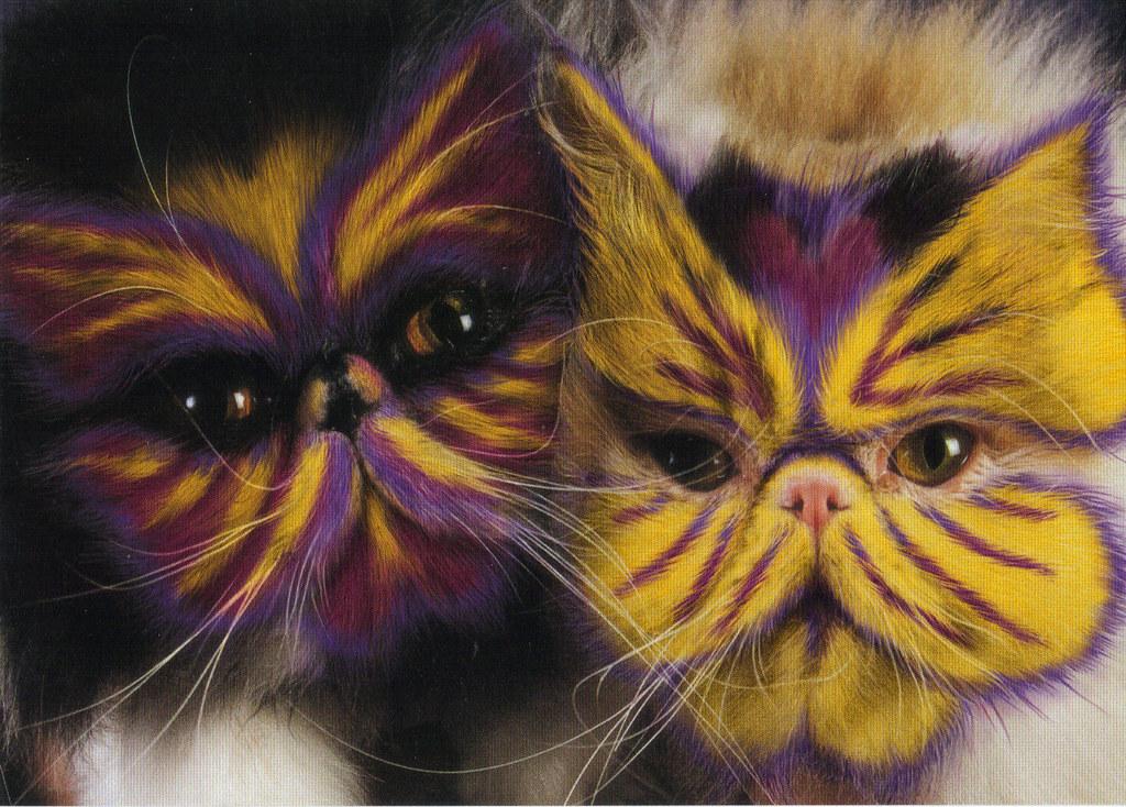 Mardi Gras Painted Cat...