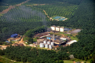 Palm oil mill | by Marufish