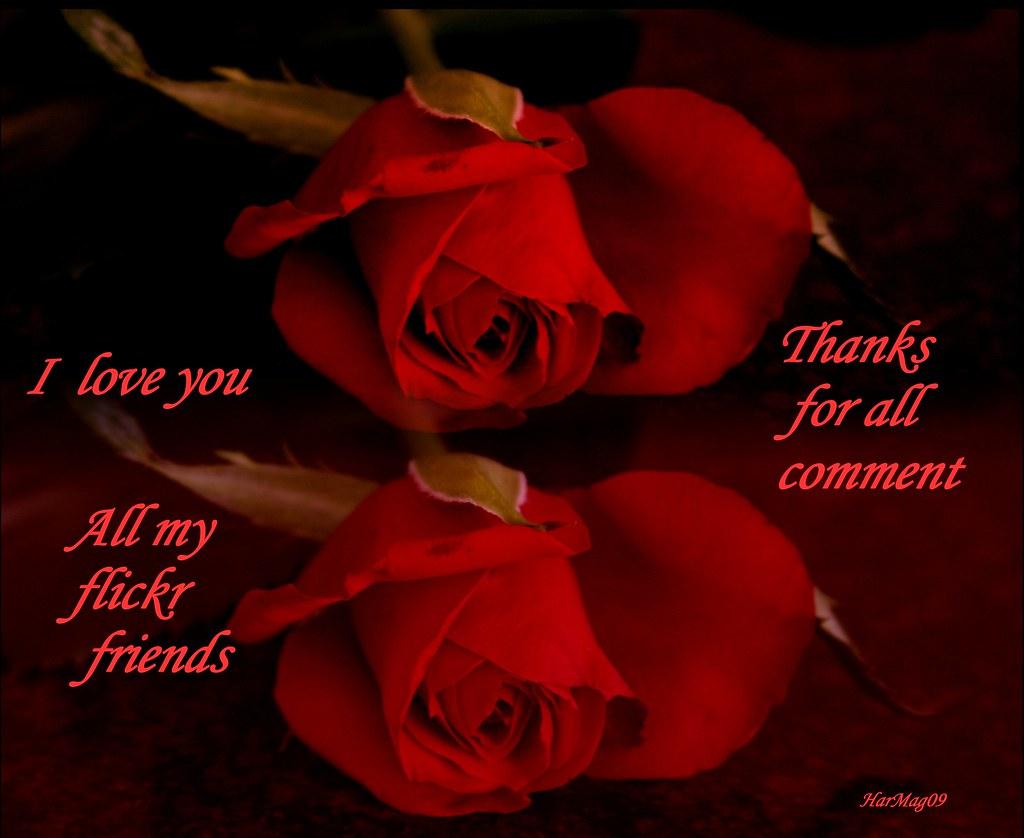 Rojo que te quiero rojo  - Página 12 4170303478_d3d892efbd_b