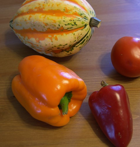 Squash, peppers, and a tomato | by conner.mccall