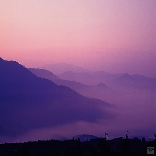 a purple morning | by Fei·D