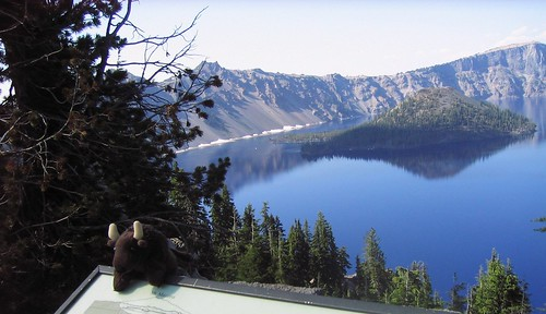 Buddy at Crater Lake NP | by National Park Trust's Buddy Bison™