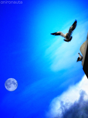 I would fly to the moon and back... (IN EXPLORE) | by Onironauta...