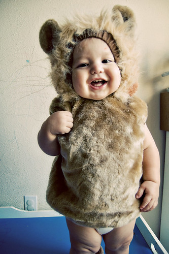 365.275: baby lion | by Lisa | goodknits