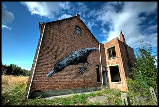 Roa - The early bird catches the worm. | by Romany WG