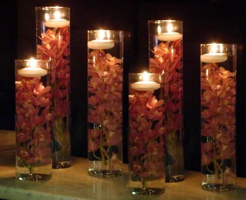 Orquideas y Luz Decoracion   Humberto Terenziani   Flickr