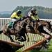Race Horses Crash Fence