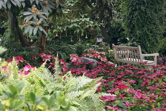 ... Foellinger Freimann Botanical Conservatory, Fort Wayne, Indiana  Www.botanicalconservatory.org  