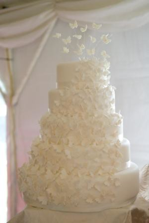 butterfly wedding cake | by cakes from the sweetest thing (Susan)
