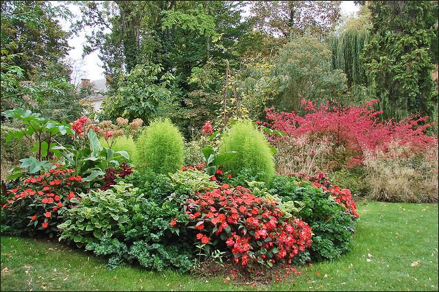 Jardin Decoratif Autour Piscine En Teck Haute