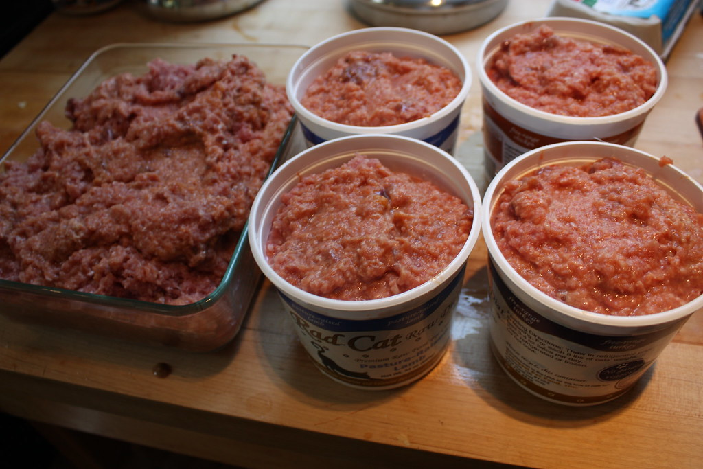 Homemade Cat Food Recipes For Sensitive Stomach You Tube