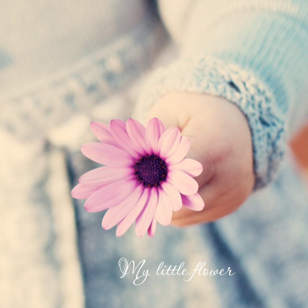 My little Flower EXPLORE I love her cute chubby hands…